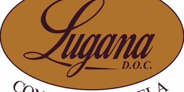 Consorzio Lugana: il nuovo cda riconferma Montresor presidente