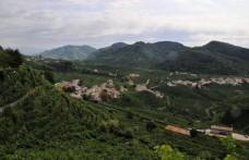 """""""Weekend in Cantina"""" tra le colline di Conegliano e Valdobbiadene"""