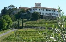 Gli effetti benefici del vino: se ne parla giovedì all'Abbazia di Rosazzo