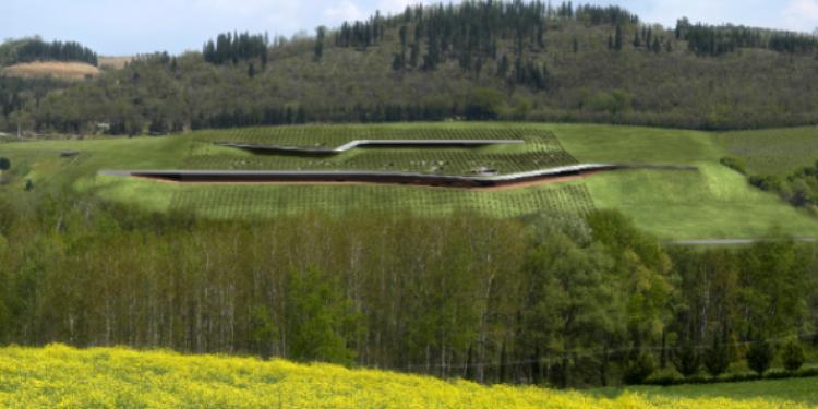 Veronafiere: si parla di ecosostenibilità applicata alla viticoltura