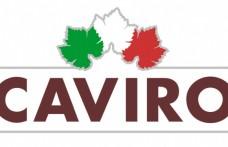 Bilancio Caviro 2010: 2,9 milioni di euro l'utile netto
