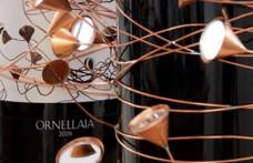 Nove lotti di Ornellaia 2008 all'asta per 130 mila euro