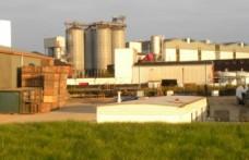 Energia verde al whisky scozzese. Insieme GE e William Grant&Sons