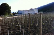 Casadonna e Feudo Antico per l'Abruzzo: grande cucina e viticoltura di montagna