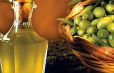 L'IRVV diventa IRVOS e si occuperà anche di olio
