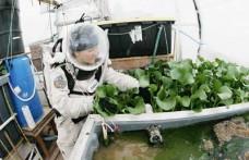 Space farming ovvero la sfida dell'agricoltura spaziale