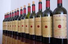 Masseto.net: l'eccellenza vinicola online