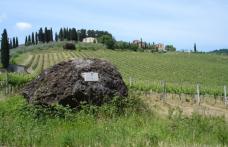 """""""Di Vini Profumi"""" e i 300 anni del Carmignano"""