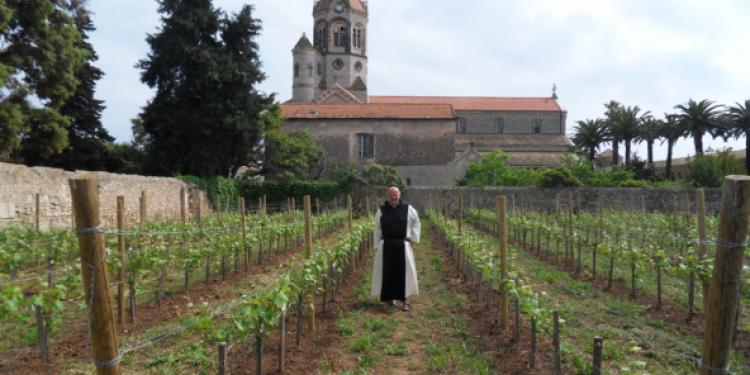Prima asta per i vini dei monaci di Lérins: 54 mila euro di incasso