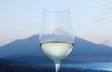 Il vino giapponese Koshu presentato all'Oiv di Parigi
