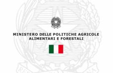 Giuseppe Martelli confermato presidente del Comitato Nazionale Vini