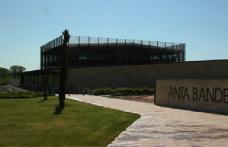 Antonio Banderas diventa produttore di vino in Spagna