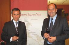Gruppo Italiano Vini: nel 2011 +12% di fatturato