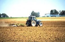 Export agroalimentare: a gennaio +6,6% sul 2011