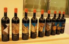 I vini Pasqua celebrano Verona in etichetta