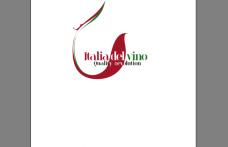 Nicoletto riconfermato presidente del Consorzio Italia del Vino