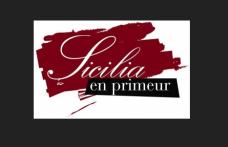 Due conferenze stampa per presentare Sicilia en Primeur 2012