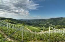 Tedeschi presenta il progetto di zonazione della Tenuta Maternigo