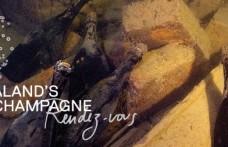 Ciclo d'aste parigino per lo Champagne naufragato nel Baltico