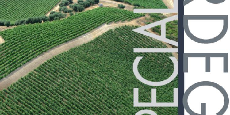 I nostri report: Sardegna