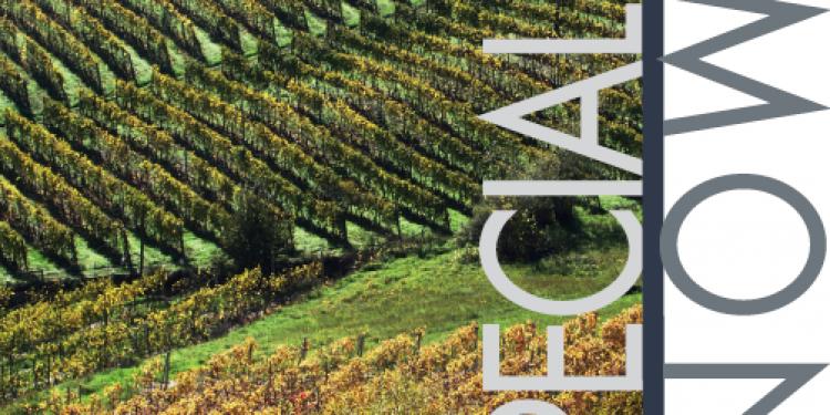 I nostri report: Piemonte