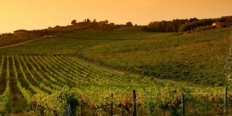 Annate storiche di vini mitici (15): Toscana II parte