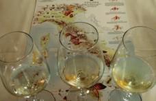 A Soave il Forum internazionale dei vini vulcanici 2012