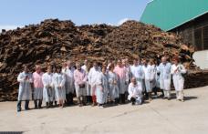 In Estremadura alla scoperta dei tappi in sughero Diam Bouchage