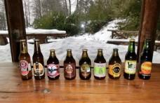 Venti birre artigianali della regione di Los Ríos (Cile) a confronto