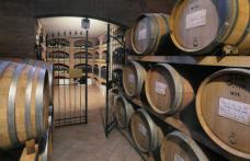 Speciale Piemonte: Terre del Barolo