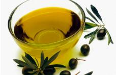 Vendite in ripresa per il settore dell'olio di oliva