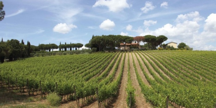 Speciale Toscana: Fattoria di Magliano