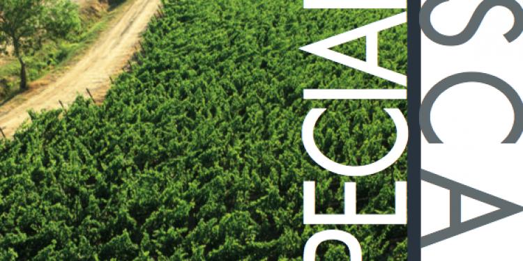 I nostri report: Toscana
