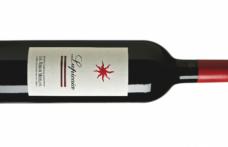I vini delle feste: Lupicaia, Igt Toscana 2007 di Castello del Terriccio