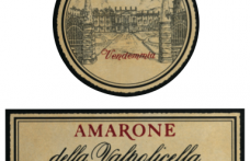 I Vini del 2013: Bertani ci offre l'Amarone della Valpolicella Classico 2004