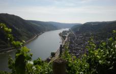 Il Riesling in Germania. Ad aprile due viaggi-studio della fiera di Stoccarda
