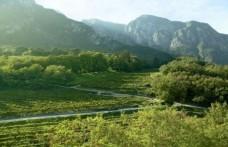 Pinot nero d'Italia. Quello di Trentino e Valle d'Aosta strutturato e intenso