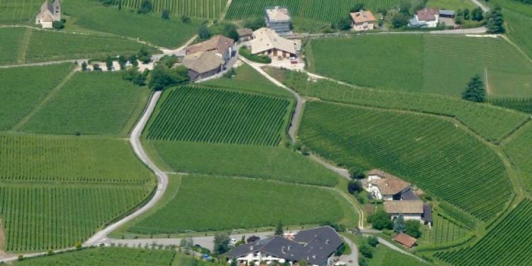 Pinot nero d'Italia. I grandi cru dell'Alto Adige