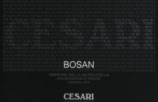 I Vini del 2013: Cesari ci offre Bosan 2004