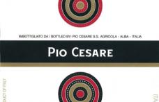 I Vini del 2013: Pio Cesare ci offre Il Bricco 2008