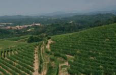 Le degustazioni dell'enoluogo: protagoniste Travaglini, Antoniolo e Anzivino