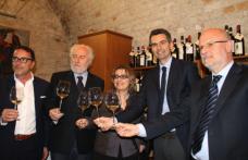 Grandi Langhe Docg: oltre 300 operatori per 600 vini