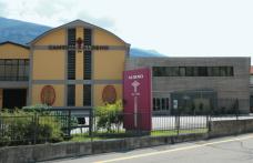 Cantina Aldeno: prima cooperativa bio del Trentino