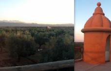 """Anche un olio del Marocco premiato al """"Magnifico"""""""