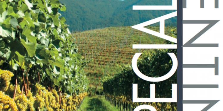 I nostri report: Trentino