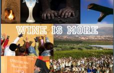 Wine is More. Dieci storie di vita