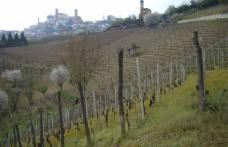Cisterna d'Asti, Colli Tortonesi e Oltrepò: uniti nel segno della Croatina