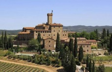 Anche Castello Banfi a Bolgheri. Acquistati 5 ettari