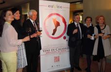 Calabria: lo studio EuVite su 289 vitigni