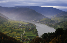 Enoteca Cortina per VinoVip: i Riesling austriaci di Nikolaihof (Wachau)